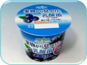 果物から見つけた乳酸菌ヨーグルトブルーベリー.JPG